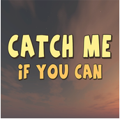 Catch Me If You Can on pc
